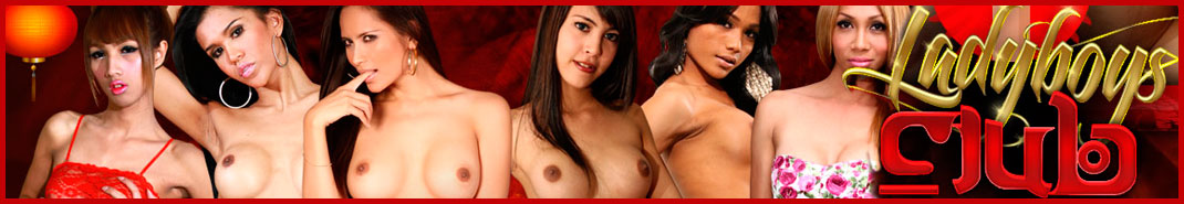 Ladyboy's Club has scoured the best of the best in Bangkok to bring  you the sexiest ladies.